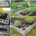 Cement Block Raised Bed - Burpee Garden Projects