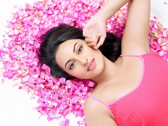 Sonakshi Sinha Sexy HD wallpaper download