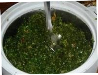 Kenyan greens simmered with tomatoes (Sukuma Wiki)