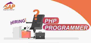 lowongan kerja php programmer sap express