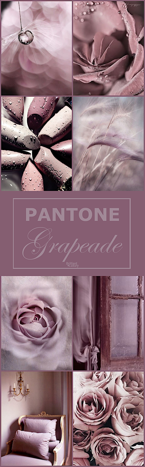 Brilliant Luxury♦Pantone Fashion Color Grapeade