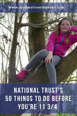 National trust pin
