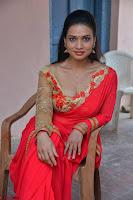 Bhimbika in Red Orange Saree at Sikhandi Movie Launch Spicy Pics 12.jpg