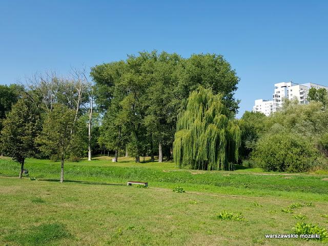 Warszawa Warsaw Mokotów park parki teren zielony Dolinka Służewiecka drzewa