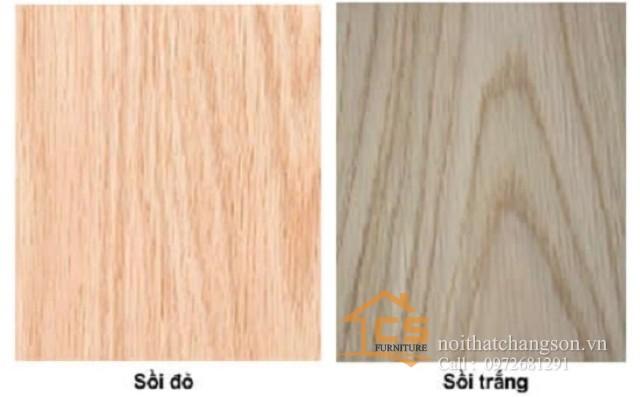 Cách phân biệt gỗ sồi nga và tần bì 1