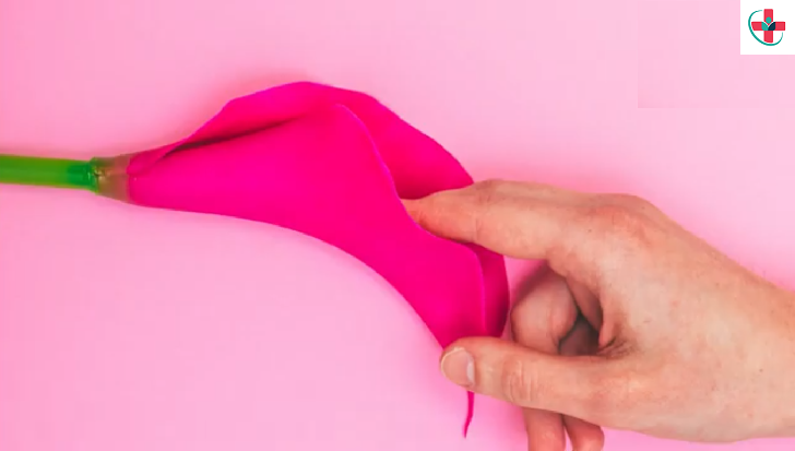 What You Need to Know About Your Clitoris