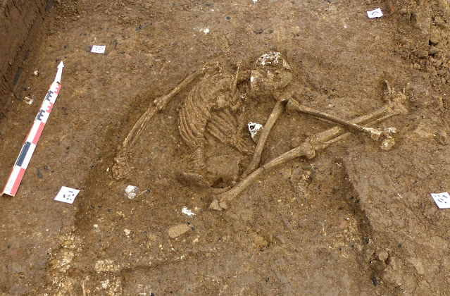 More than 100 pre-Columbian burials unearthed in Guadeloupe