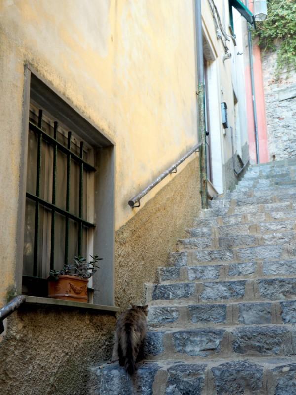 Porto Venere stairs