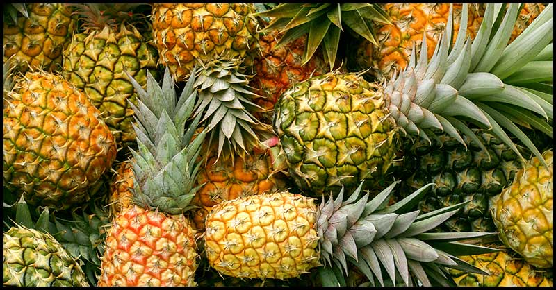 Pineapples May Help Promote Good Digestion