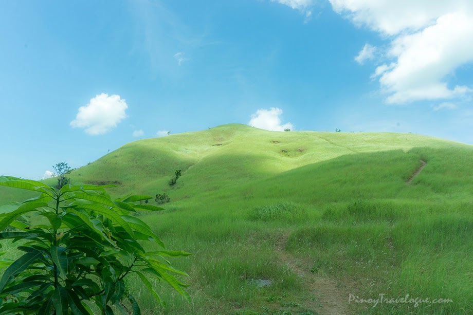 Mt. Tagapo Trip Guide and Itinerary (Day Hike)