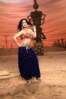 Actress Varalaxmi Sarathkumar  Pictures in Madha Gaja Raja  0008