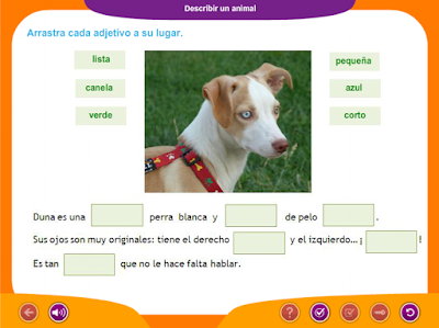 http://ceiploreto.es/sugerencias/juegos_educativos_2/4/Describir_animal_3/index.html