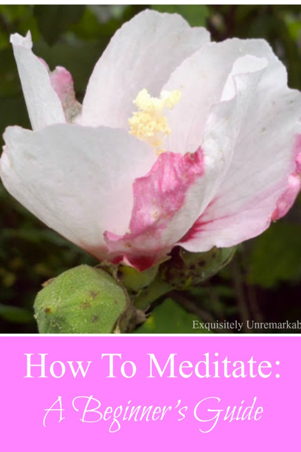 How To Meditate A Beginner's Guide