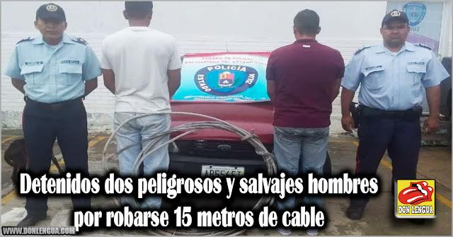 Detenidos dos peligrosos y salvajes hombres por robarse 15 metros de cable