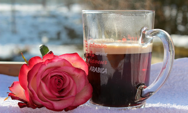 coffee-cup-rose