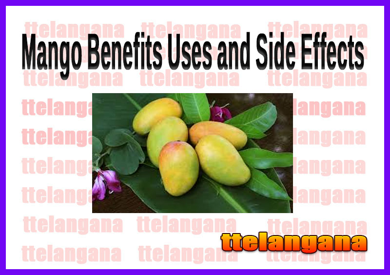 Mango Benefits Uses and Side Effects