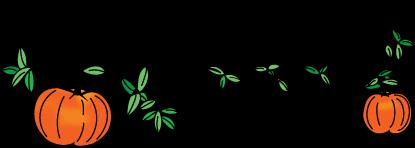 Image result for Pumpkinvine Ride images