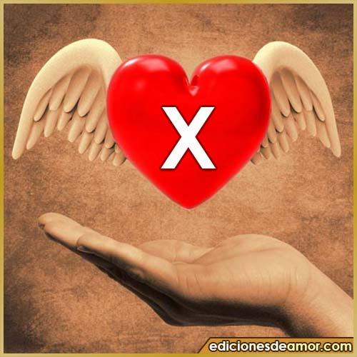 corazón con alas con letra X