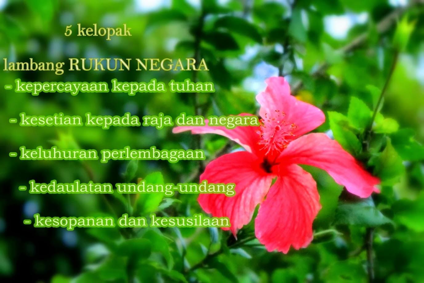 Lukisan Bunga Raya Bunga Kebangsaan Malaysia Cikimm Com