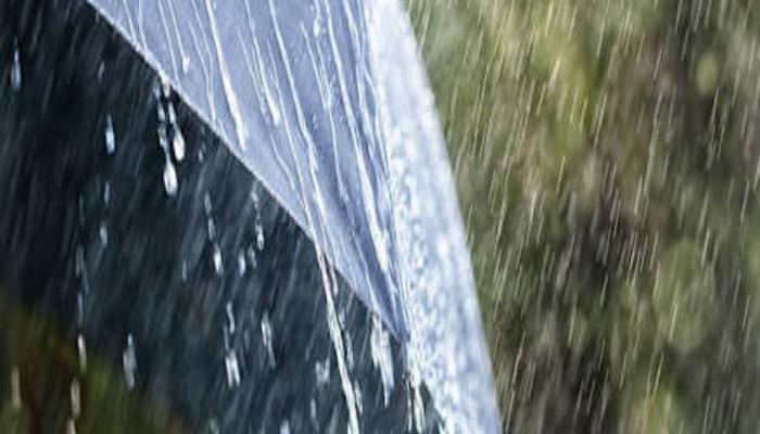 The Season Of Rainfall Part 2.