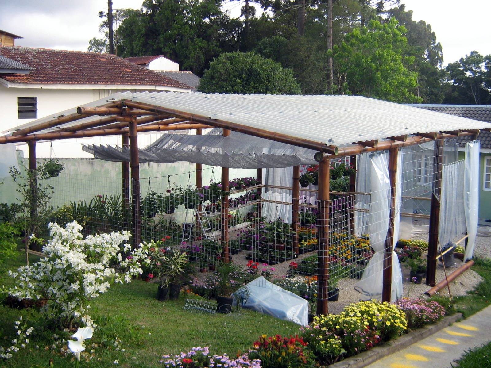 Vida bambu curitiba pr estufa em bambu for Estufas de jardin