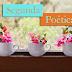 Segunda Poética - Admirando