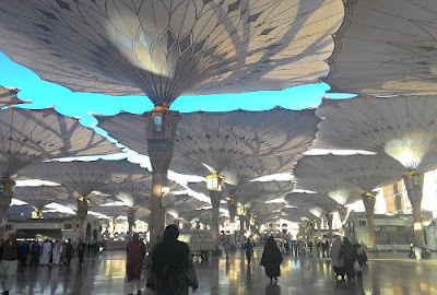 Kotoran Burung Jatuh di Masjid Nabawi