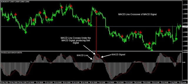 The MACD charts looks confusing to many investors, but it actually uses three simple components, which are expressed in numbers. The first number expresses the number of periods that are used to calculate the faster moving average. The second number expresses the number of periods that are used to calculate the slower moving average.