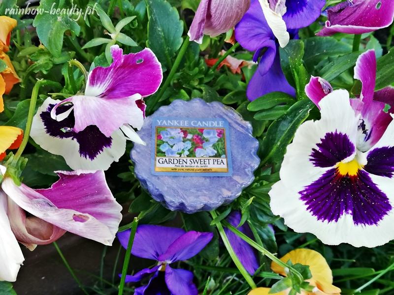 garden-sweet-pea-yankee-candle-wosk