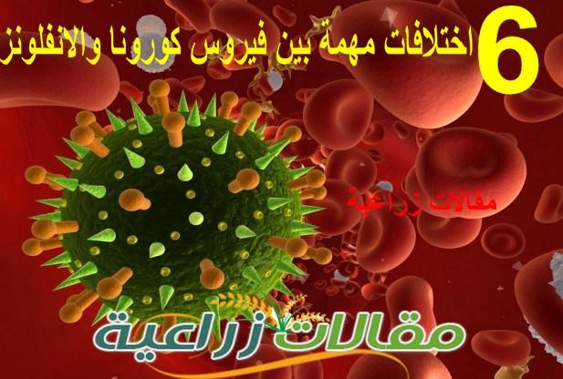6 اختلافات مهمة بين فيروس كورونا والانفلونزا - تعرف عليها - مقالات زراعية