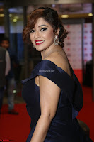 Payal Ghosh aka Harika in Dark Blue Deep Neck Sleeveless Gown at 64th Jio Filmfare Awards South 2017 ~  Exclusive 057.JPG