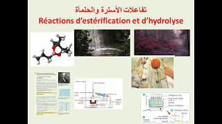 Réactions d'estérification et Hydrolyse-2Bac-BIOF-SVT-PC-SM.