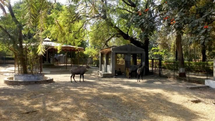 Image contains zoo & garden