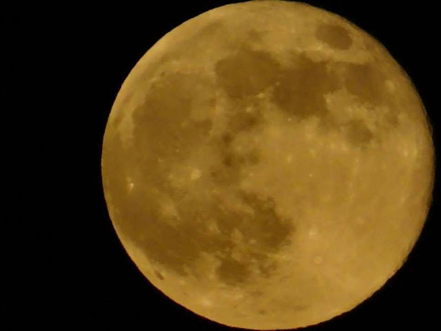 Super Moon, Photograph by Anthony McCune