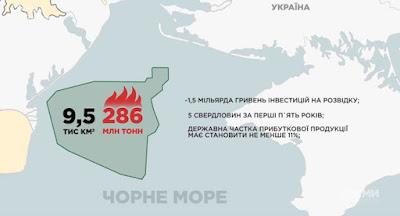 Конкурс на разработку площади Дельфин выиграла компания Пономарева