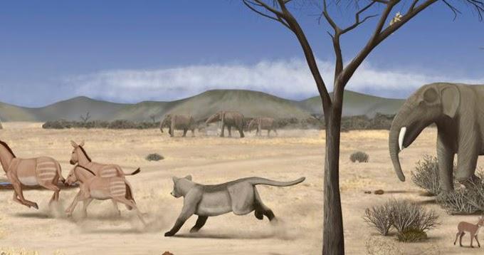 Una sabana casi desértica se extendía por Madrid hace 14 millones de años  37c4a6214fa