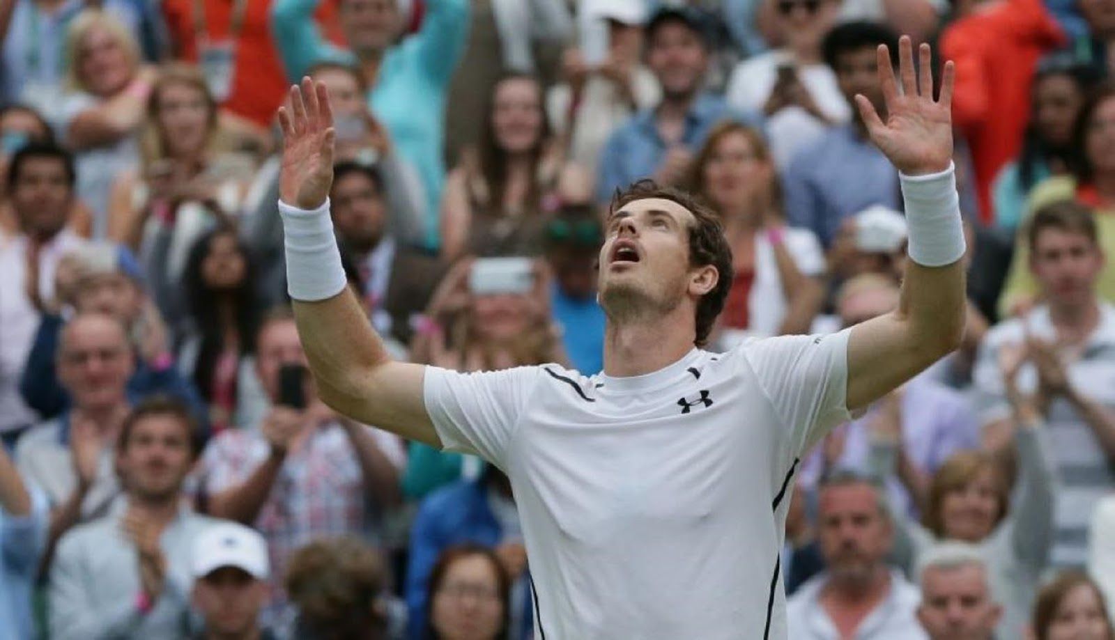 ANDY MURRAY 8