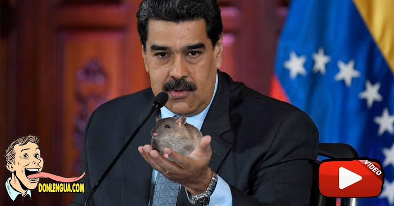 """Maduro mandó """"Al Carrizo"""" a la Unión Europea (Después anda pidiendo cacao cuando necesita dinero)"""