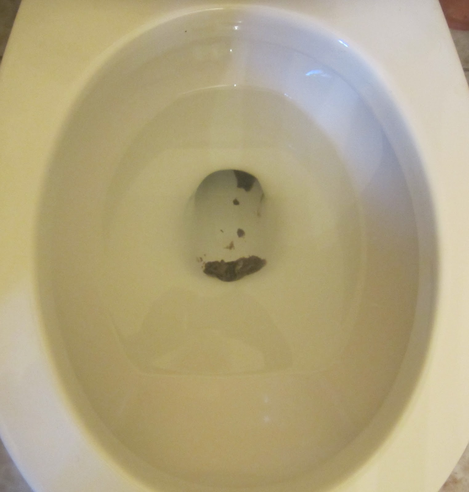 Little Green Blog On The Prairie Nasty Scales Of A Toilet