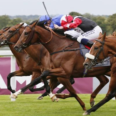 Racing tips best free horse racing tips,