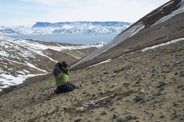 Scientists uncover 71 million year old dinosaur fossils during Antarctic expedition