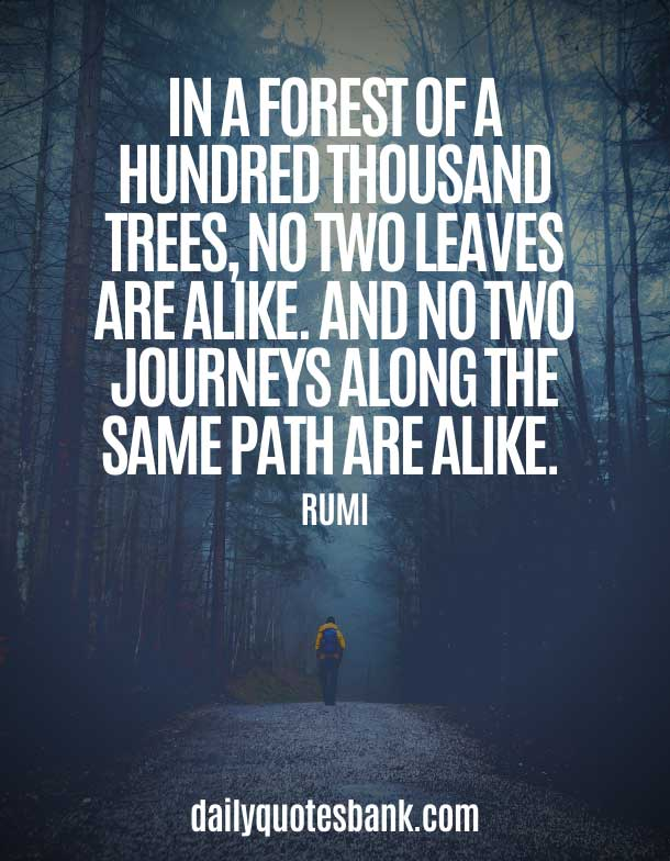 Quotes About Paths and Journeys