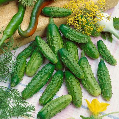 साइनस, kheera, cucumber