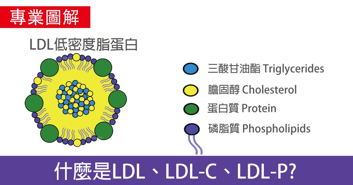 什麼是LDL、LDL-C、LDL-P