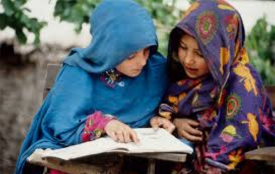 Number Of Schools In Kohat Division KPK , Brief Detail