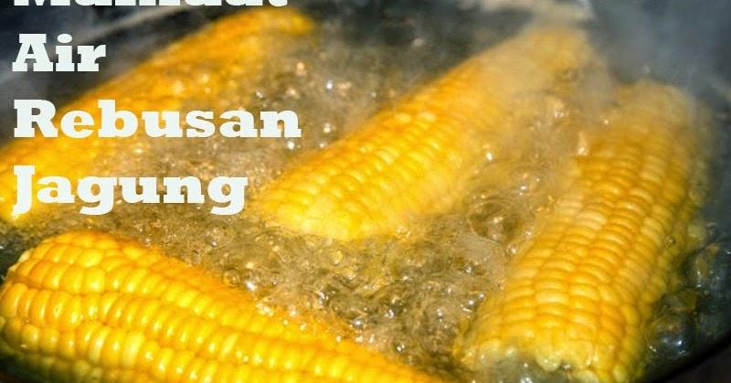 Manfaat jagung manis rebus untuk Ibu hamil