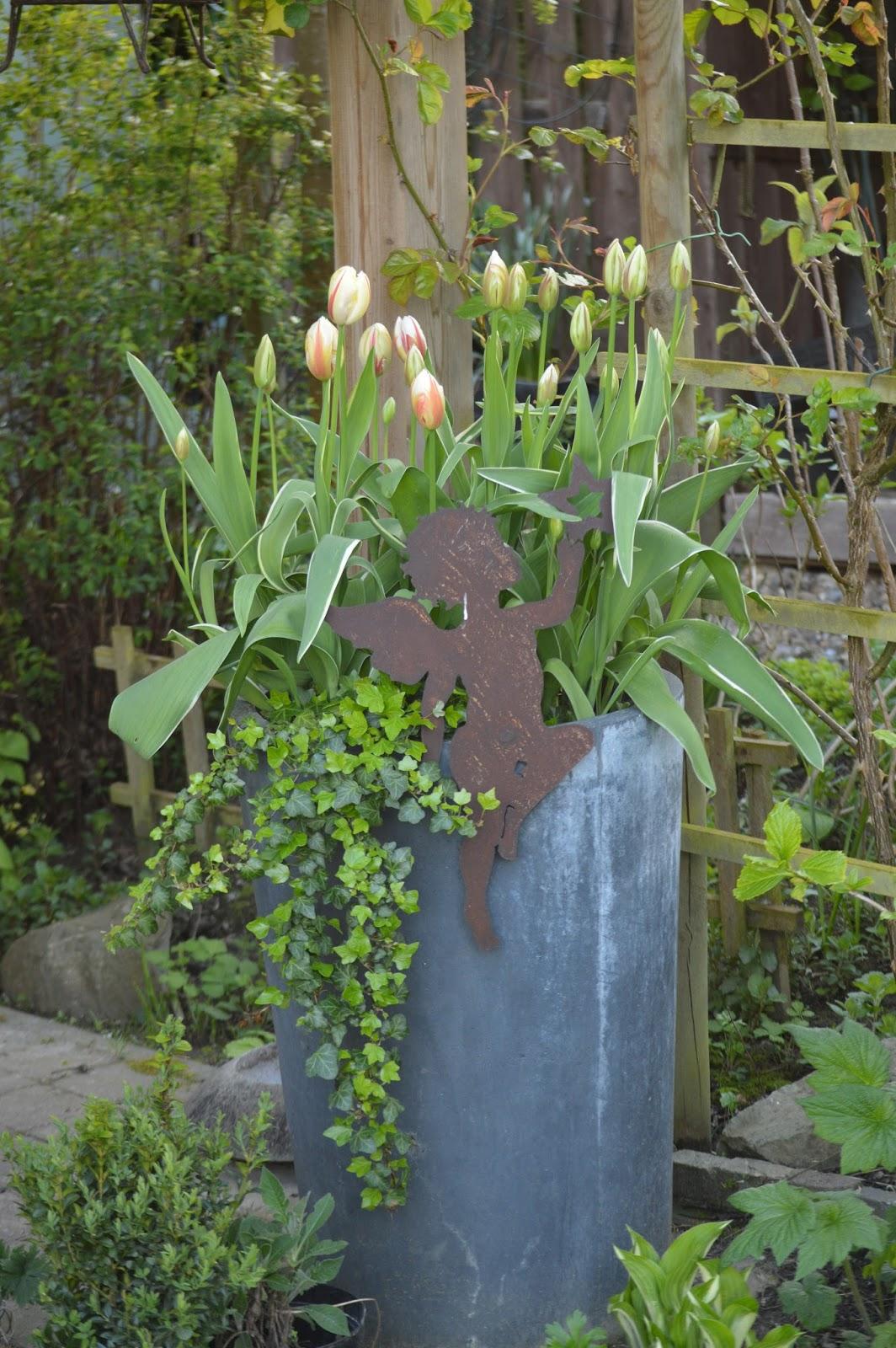 passionn 233 ment jardin derni 232 res tulipes du jardin 1