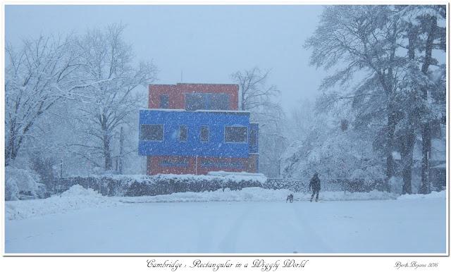 Cambridge: Rectangular in a Wiggly World