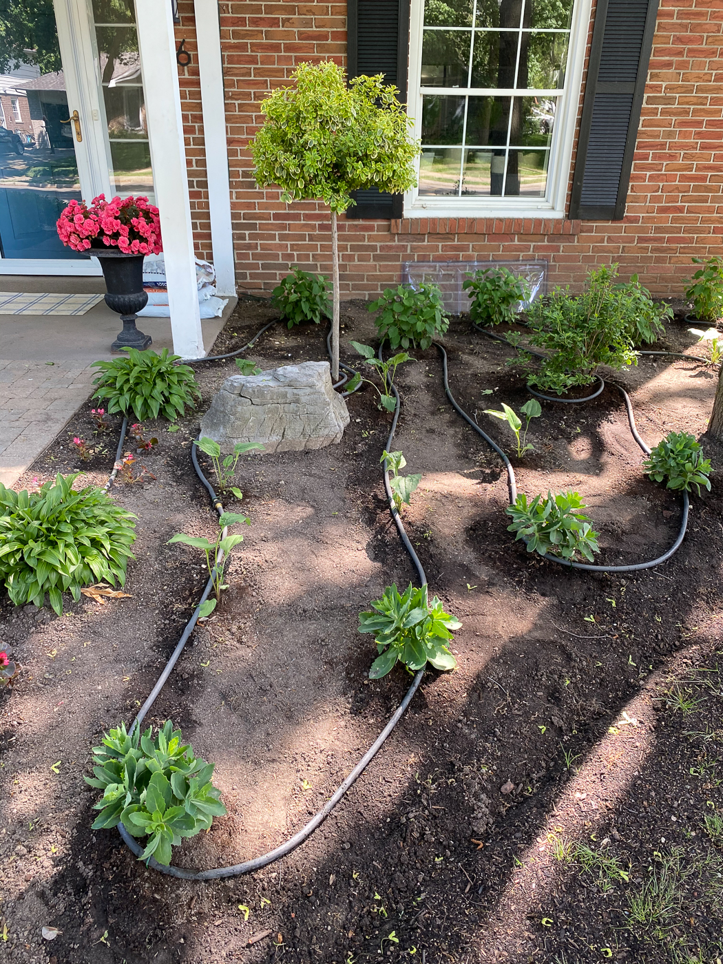 how to set up a soaker hose system, garden soaker hose, soaker hose watering system, how to water garden with soaker hose