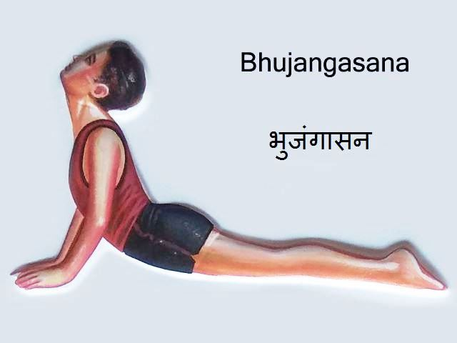 Bhujangasana in Hindi